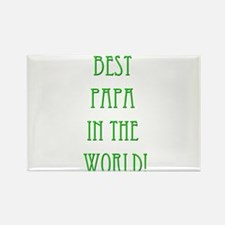 Best Papa In The World 13 Rectangle Magnet