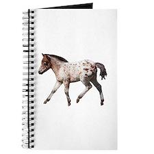 """""""Knabstrup foal 2"""" Journal"""