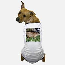Capybara with Rocks Dog T-Shirt