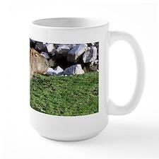 Capybara with Rocks Mug