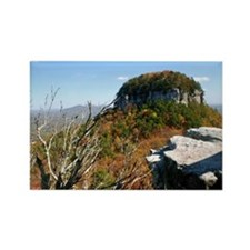 Pilot Knob in Fall Rectangle Magnet