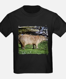 Capybara with Rocks T