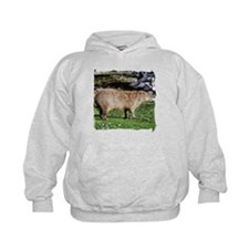 Capybara with Rocks Hoodie