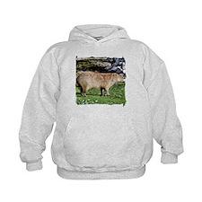 Capybara with Rocks Hoody