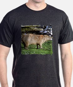 Capybara with Rocks T-Shirt