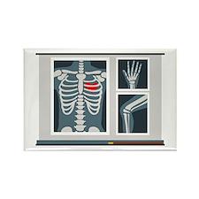 Heart X-Ray Magnets