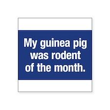 5x3myGuinea Sticker