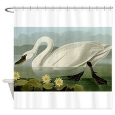 Audubon Swan Bird Shower Curtain