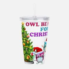 Owl Be Home For Christmas Acrylic Double-wall Tumb
