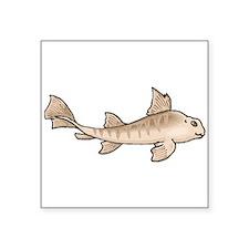 Horn Shark Sticker