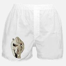 Realistic Rhinoceros Boxer Shorts