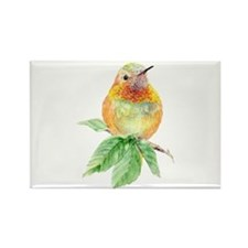 Rufous Hummingbird Watercolor Bird Nature Art Magn