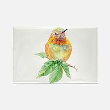 Rufous Hummingbird Watercolor Bird Nature Art Magn