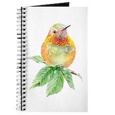 Rufous Hummingbird Watercolor Bird Nature Art Jour