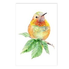 Rufous Hummingbird Postcards (package Of 8)
