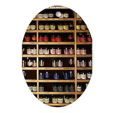 Cute Shelves Ornament (Oval)