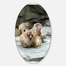 snow monkeys Oval Decal