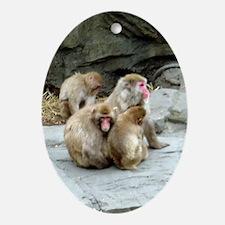 snow monkeys Oval Ornament