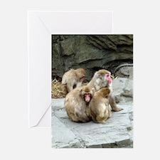 snow monkeys Greeting Cards (Pk of 10)