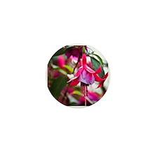 Pink Fuchsia Flower Mini Button