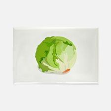 Lettuce Head Magnets