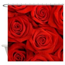 Cute Valentines Shower Curtain