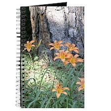 Daylilies Journal
