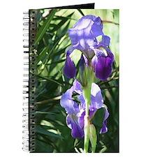 Old-Fashioned Iris Journal