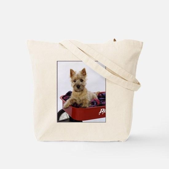 Baby Cairn Terrier Tote Bag
