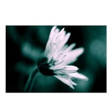 Funny Black white flower Postcards (Package of 8)