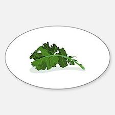 Kale Leaf Decal