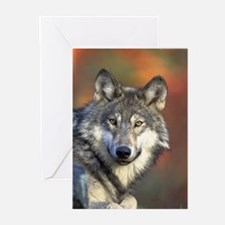 Wolf 024 Greeting Cards