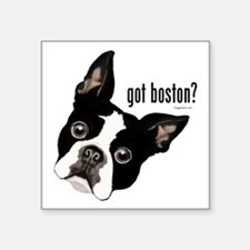 "Got Boston? Square Sticker 3"" x 3"""