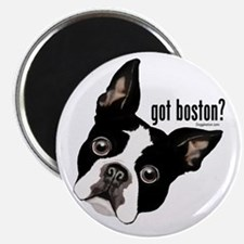 Got Boston? Magnet