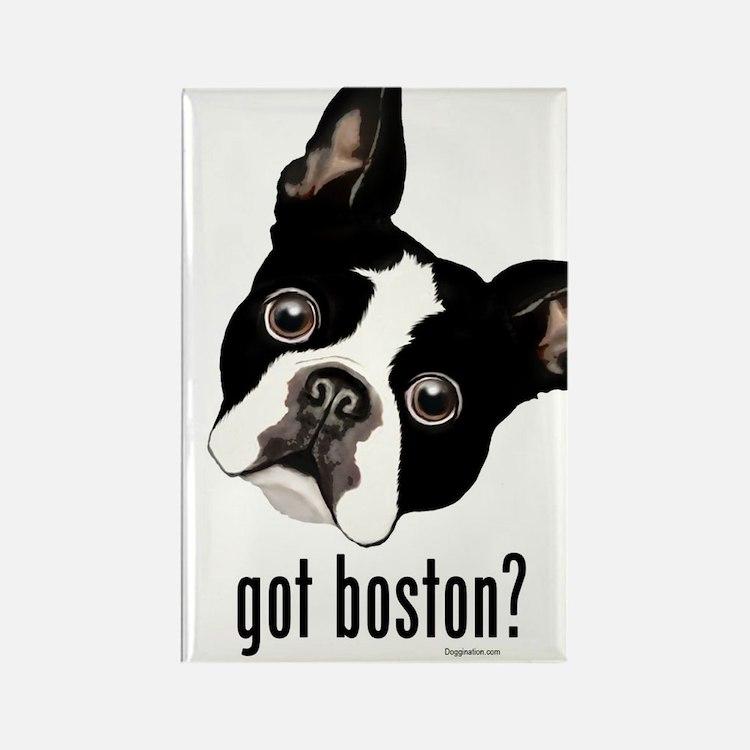 Got Boston? Rectangle Magnet