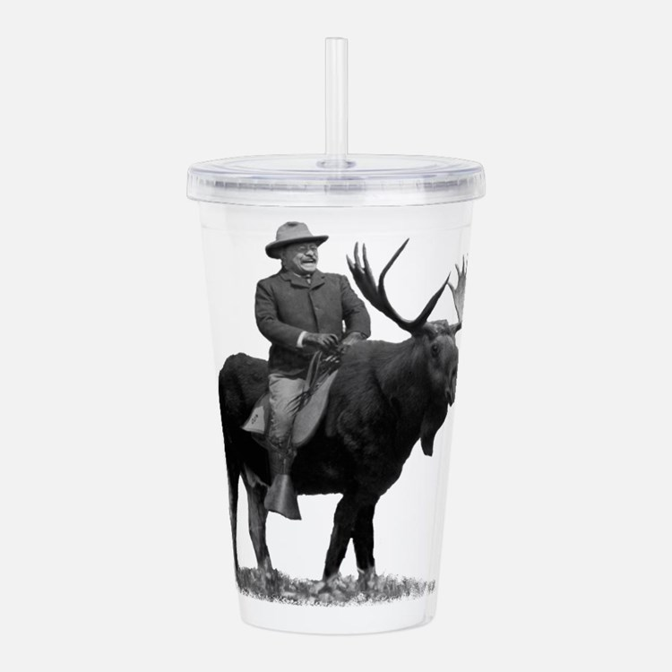 teddy roosevelt insulated drinkware can coolers food