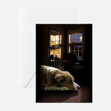 Alo Sleeping, 10 greeting cards