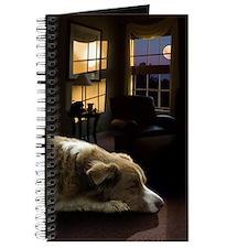 Alo Sleeping, journal