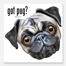 "Got Pug? Square Car Magnet 3"" x 3"""