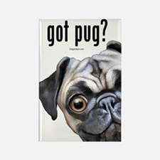 Got Pug? Rectangle Magnet