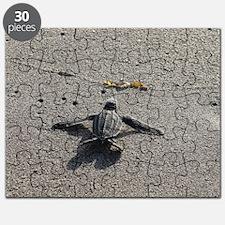 Unique Carlin Puzzle