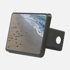 Cool For turtles Hitch Cover