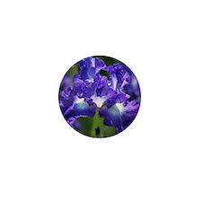iris garden Mini Button
