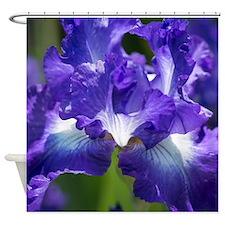 Cute Purple iris Shower Curtain