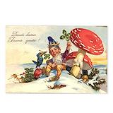 Raven postcard Postcards
