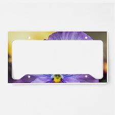 Lavender Pansy License Plate Holder