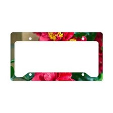 Camellia License Plate Holder