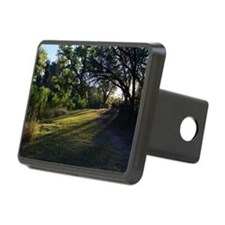 Peaceful Solitude Hitch Cover