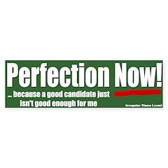 Voter: Perfection Now! Bumper Bumper Sticker