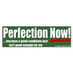 Voter: Perfection Now! Bumper Sticker
